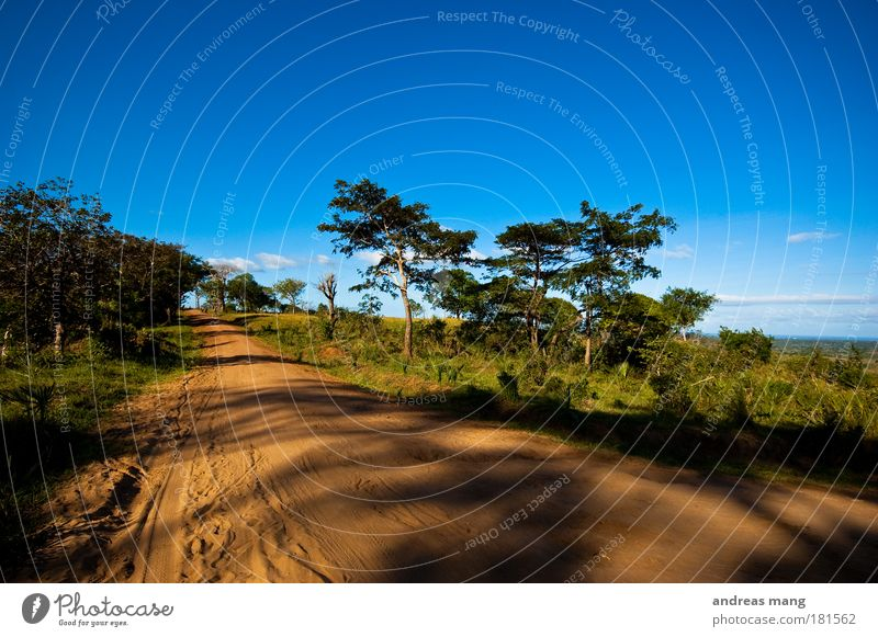 It's a long way home Colour photo Exterior shot Day Light Shadow Wide angle Vacation & Travel Safari Environment Nature Landscape Earth Sand Sky Summer Weather