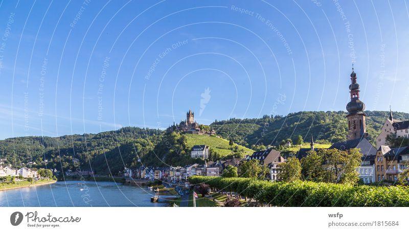 City Summer Idyll River Vine Castle Vineyard Wine growing Bunch of grapes Eifel Rhineland-Palatinate Cochem