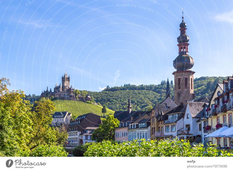 Cochem town on the Moselle Panorama Summer River Town Castle Idyll panorama reichsburg Moselle valley Bunch of grapes Vine Eifel Rhineland-Palatinate