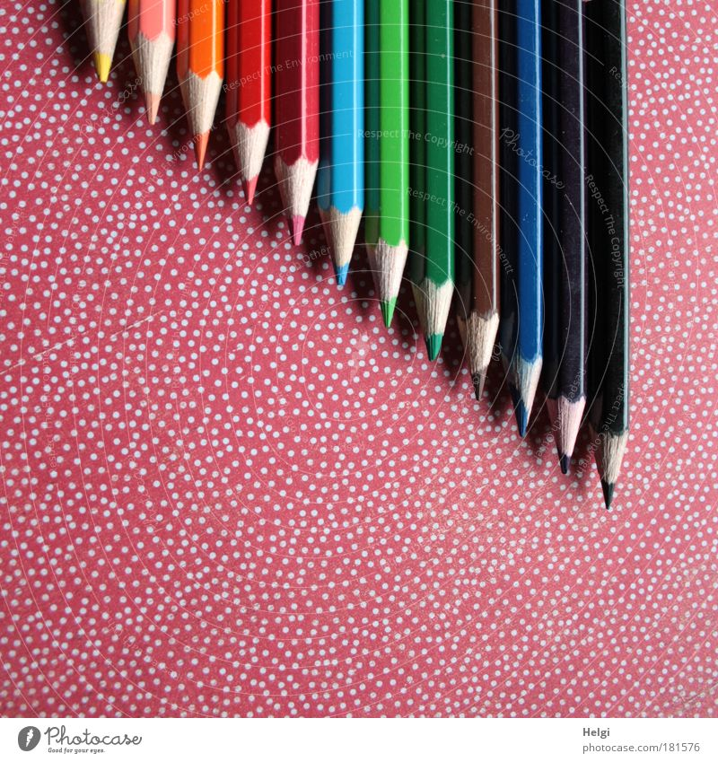 Crayons lie on a red-white dotted background Colour photo Multicoloured Interior shot Detail Deserted Copy Space left Copy Space bottom Bird's-eye view