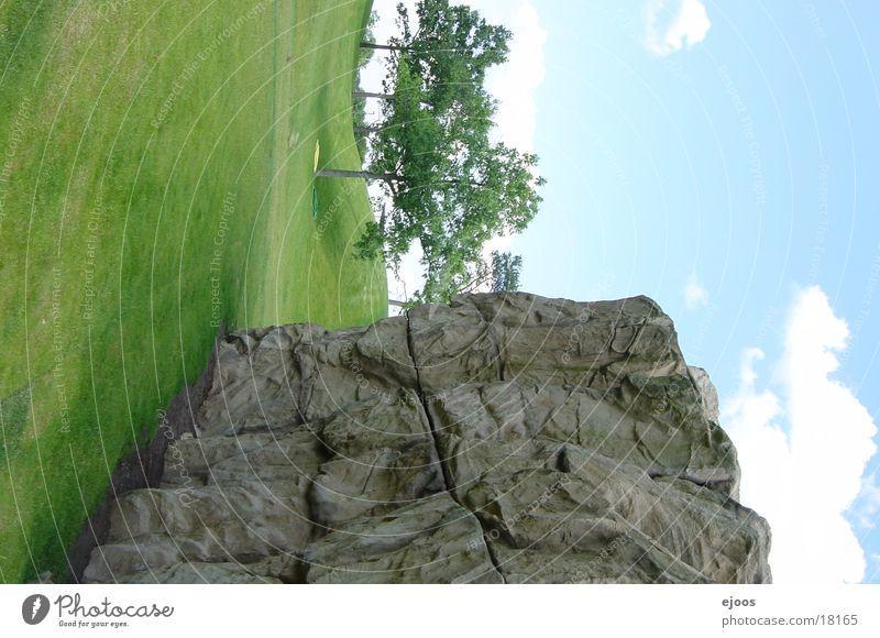 Nature Tree Mountain Landscape Rock Harmonious