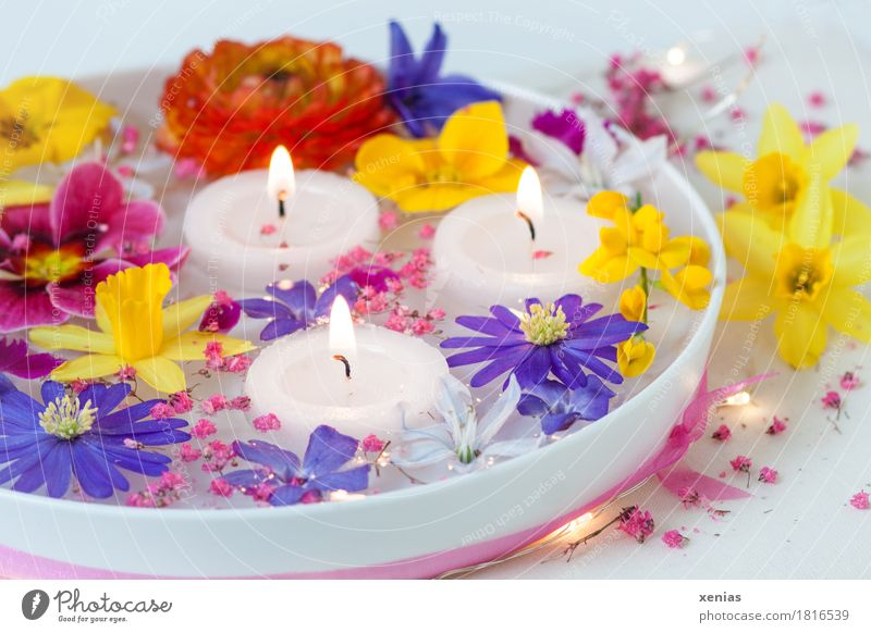 colourful spring flowers in white water bowl with three burning candles Blossom Flower Bowl Wellness Well-being Spa Feasts & Celebrations Easter Narcissus
