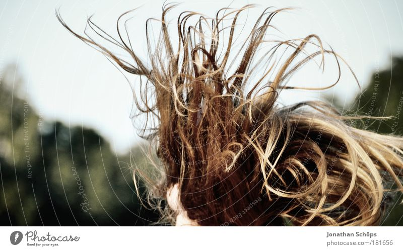 bouncing mess of hair Lifestyle Human being Feminine Young woman Youth (Young adults) Head Hair and hairstyles 1 18 - 30 years Adults Jump Fantastic Glittering