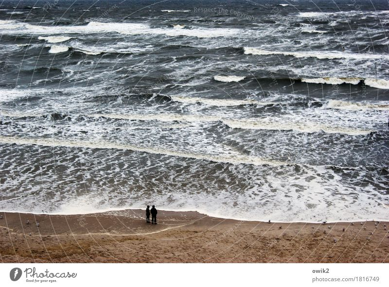 paddling pool Woman Adults Man 2 Human being Environment Nature Water Climate Bad weather Wind Gale Waves Coast Beach Baltic Sea Observe To enjoy Looking Stand