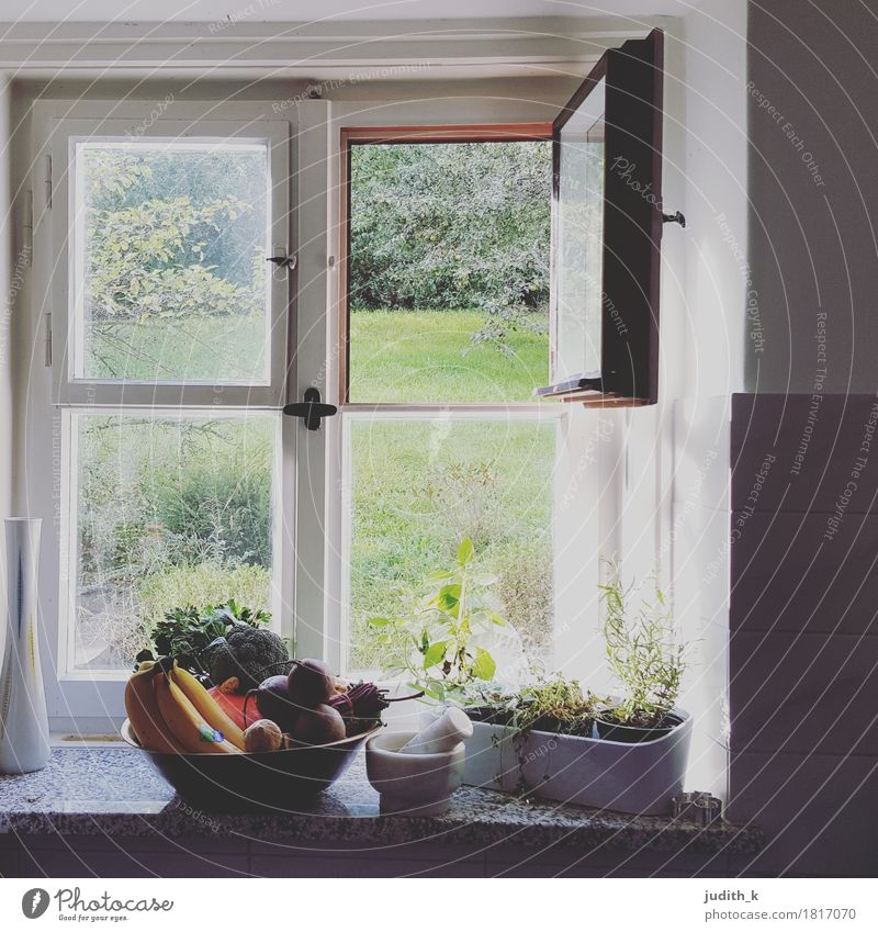 Healthy Eating House (Residential Structure) Window Meadow Autumn Healthy Garden Food Flat (apartment) Fruit Living or residing Herbs and spices Kitchen Vegetable Bowl Pumpkin
