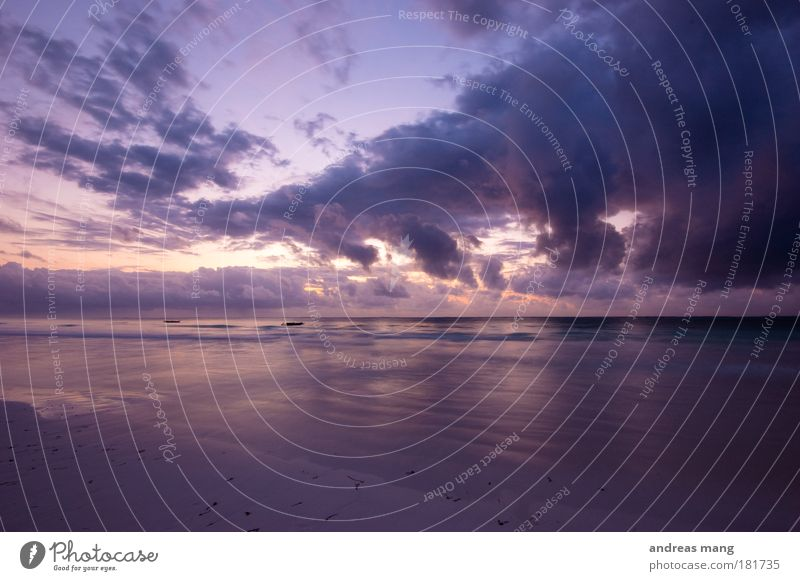 Sky Nature Water Beach Ocean Clouds Far-off places Coast Moody Waves Hope Longing Infinity Violet Wanderlust Morning