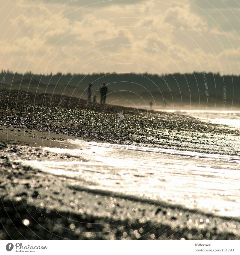 Nature Ocean Summer Beach Vacation & Travel Calm Loneliness Freedom Happy Family & Relations Sand Moody Coast Waves Wind