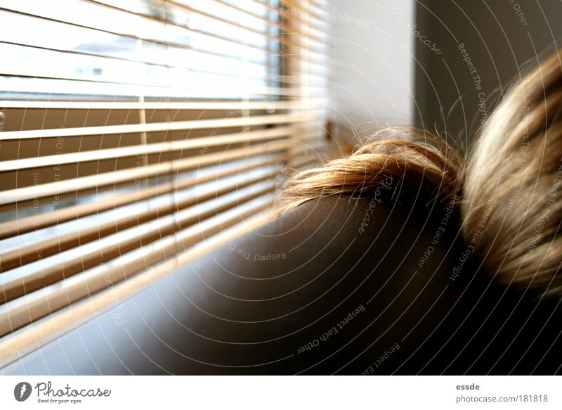 gold hair Colour photo Interior shot Blur Harmonious Relaxation Sofa Living room Feminine Hair and hairstyles Window Blonde Long-haired Wood Leather To enjoy