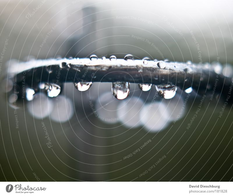 Nature Water Environment Metal Rain Drops of water Wet Round Steel Curve Silver Damp Bad weather Macro (Extreme close-up) Structures and shapes