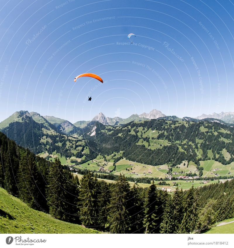 Paragliders in Gstaad Lifestyle Harmonious Contentment Calm Leisure and hobbies Trip Freedom Mountain Sports Paragliding Sporting Complex Nature Landscape