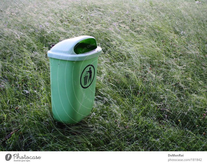 weeds Environment Nature Plant Wind Grass Exotic Meadow Trash container Plastic Sign Stand Fantastic Sustainability Green Conscientiously Cleanliness Hope