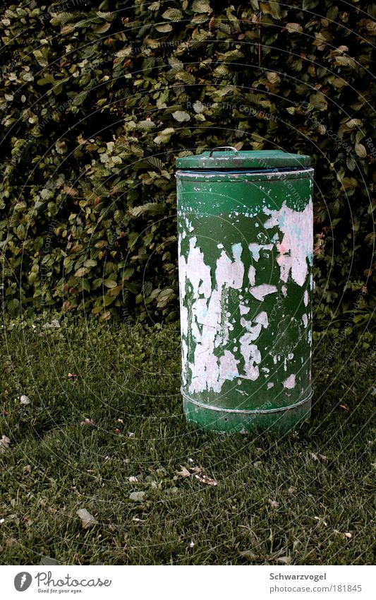 Green Loneliness Sadness Dirty Modern Arrangement Climate Clean Trash Transience Cleaning Firm Trashy Boredom Trade Throw