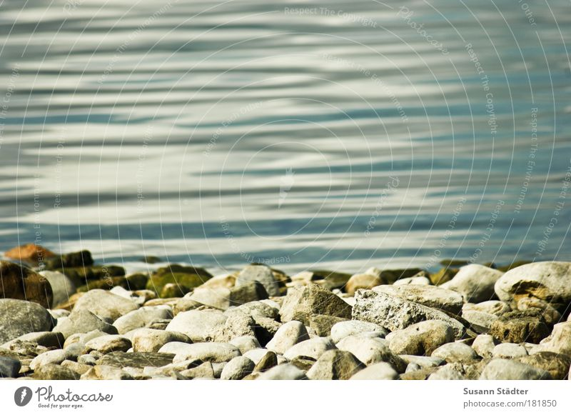 stone edge of Lake Constance Subdued colour Exterior shot Deserted Copy Space top Copy Space bottom Copy Space middle Day Sunlight Nature Summer Waves Coast