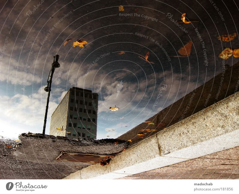 Water City Autumn Building Power Abstract Architecture Road traffic Success Transport Hope Cool (slang) Might Pattern Threat