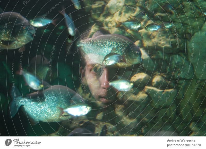Aquarium Face Freedom Ocean Human being Masculine Young man Youth (Young adults) 1 18 - 30 years Adults Environment Nature Water Animal Fish Zoo