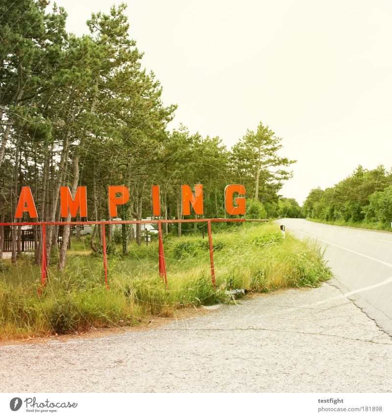 Tree Summer Vacation & Travel Meadow Grass Tourism Gloomy Bushes Good Trashy Camping Summer vacation Hideous Caravan Old fashioned Cheap