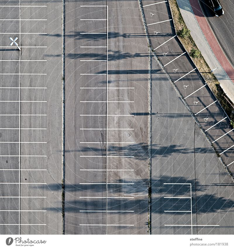 park Colour photo Exterior shot Aerial photograph Pattern Structures and shapes Deserted Dawn Day Twilight Shadow Bird's-eye view Town Shopping malls Transport
