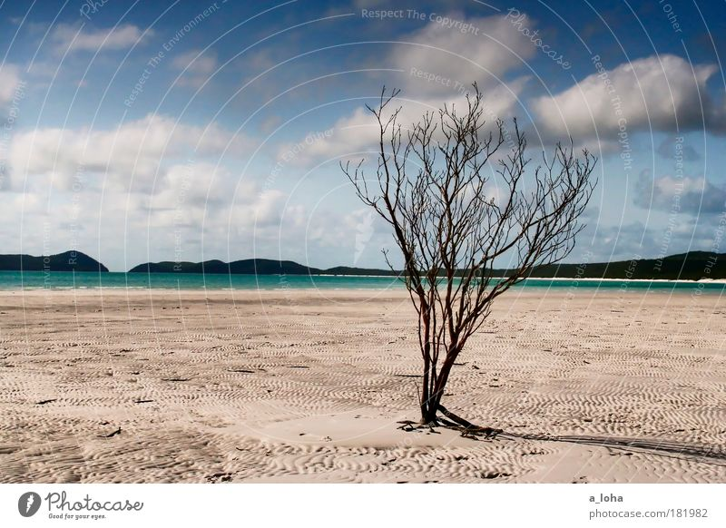 Sky Nature Water Beautiful Vacation & Travel Summer Beach Ocean Clouds Loneliness Far-off places Landscape Sand Air Australia Line