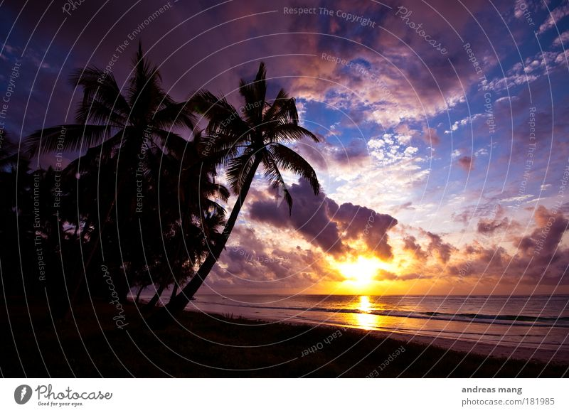 dream vacation Colour photo Exterior shot Morning Dawn Light Shadow Contrast Reflection Sunlight Sunrise Sunset Back-light Wide angle Vacation & Travel