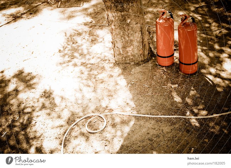 1 tree, 1 hose, 2 fire extinguishers Tree Extinguisher Garden hose Hose Water Fire Colour photo Shadow Sun Copy Space left Deserted Blaze Fire hazard Tree trunk