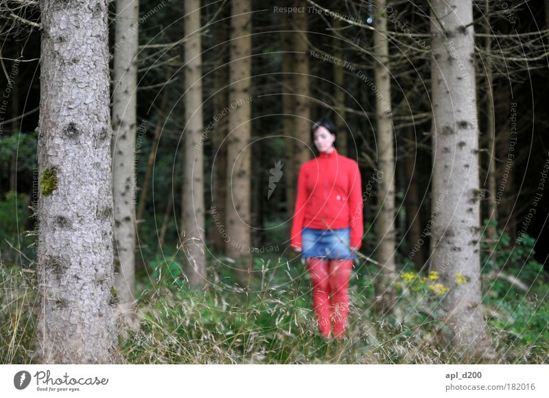 Little Red Riding Hood Colour photo Multicoloured Exterior shot Day Shadow Shallow depth of field Full-length Downward Human being Feminine Young woman