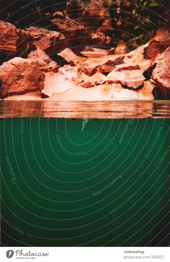 Nature Water Green Rock Swimming pool Holga Dive Exceptional Fluid Bay Pond Underwater photo Surface of water Cross-section