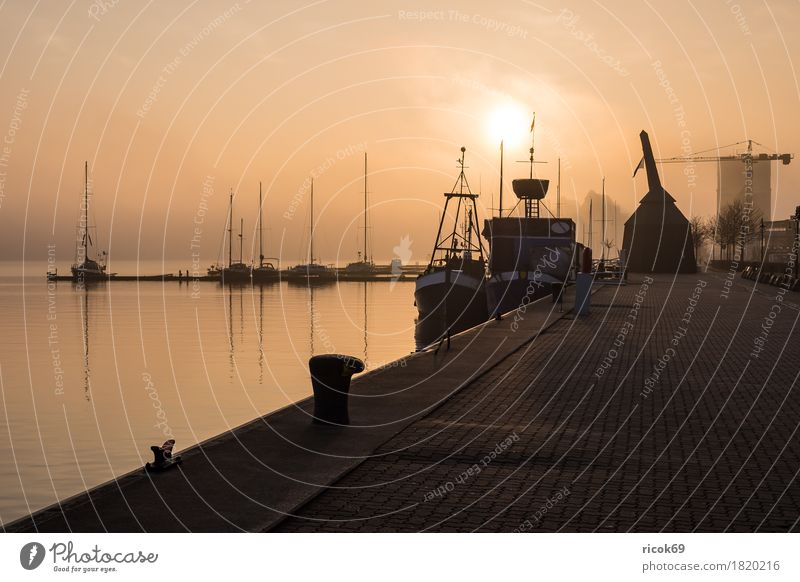 Sunrise in the city harbour of Rostock Relaxation Vacation & Travel Tourism Water River Town Harbour Sailboat Sailing ship Watercraft Romance Idyll Moody