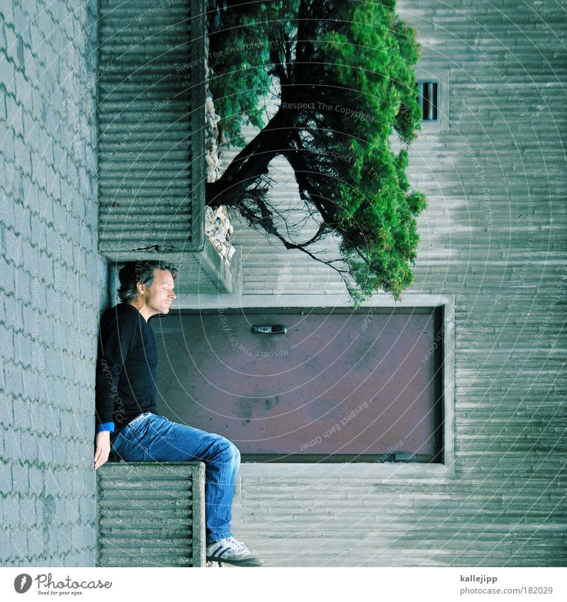 Man Nature Tree Adults House (Residential Structure) Environment Garden Style Door Flat (apartment) Sit Interior design Design Sleep Human being Lifestyle