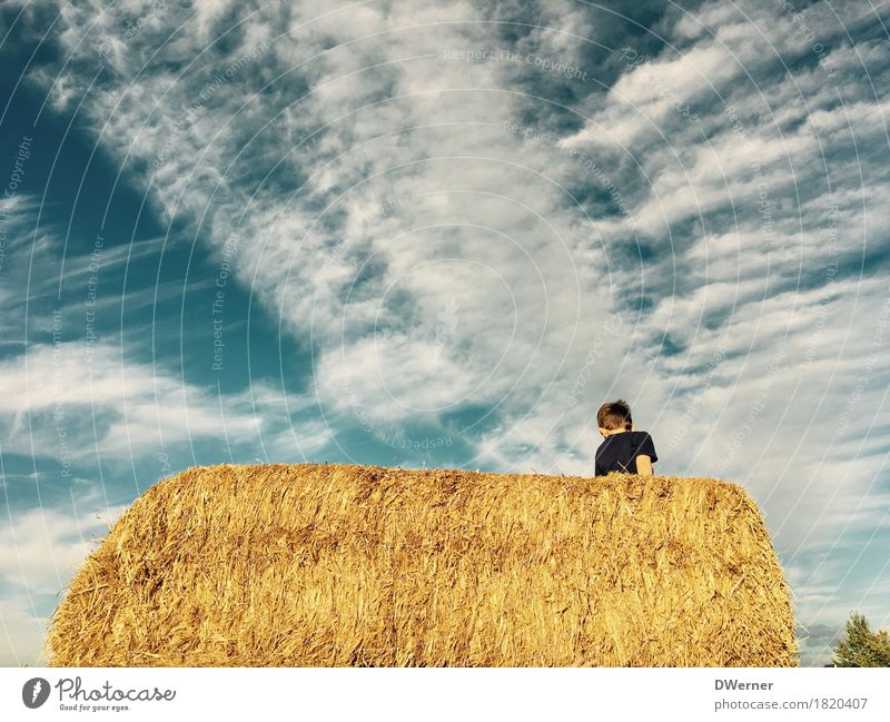 straw playground Leisure and hobbies Playing Vacation & Travel Trip Adventure Freedom Summer Summer vacation Sun Boy (child) 1 Human being Sit Jump Romp Bright