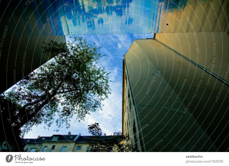 Sky Tree Green Plant Clouds Leaf House (Residential Structure) Wall (barrier) Building Facade Corner Terrace Backyard Tenant Courtyard Copy Space