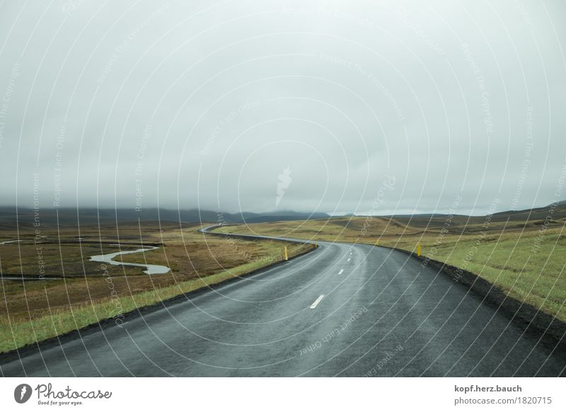 Green Landscape Loneliness Clouds Street Lanes & trails Freedom Gray Horizon Gloomy Perspective Beginning Adventure Driving End Iceland