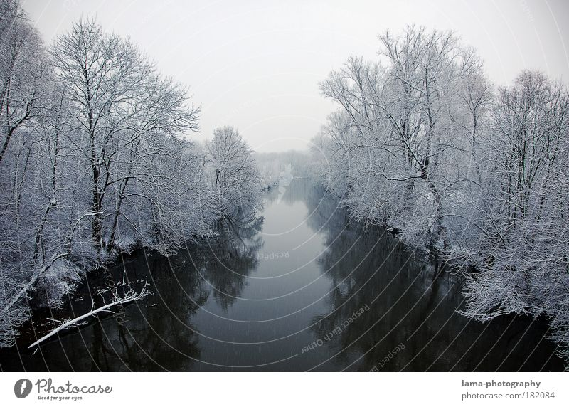 Nature Water White Tree Winter Calm Loneliness Cold Snow Landscape Ice Frost River Climate Seasons Freeze