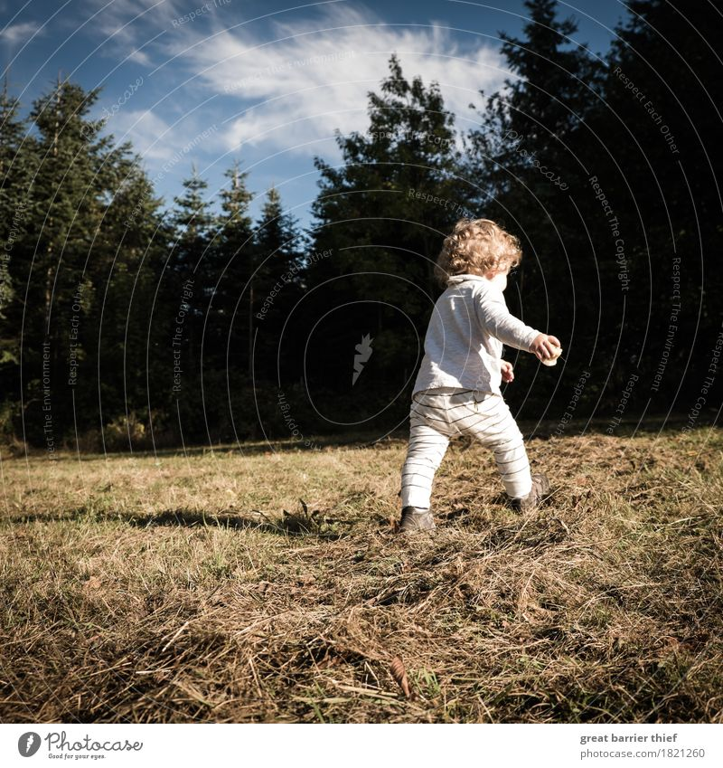 autumn child Human being Feminine Child Toddler Girl Infancy Life 1 1 - 3 years Environment Nature Landscape Animal Clouds Autumn Beautiful weather Field Forest