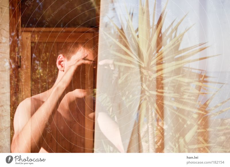 mirroring Self portrait Reflection Window pane Take a photo Palm tree Background picture Copy Space right Arm Upper body Camera Objective Day