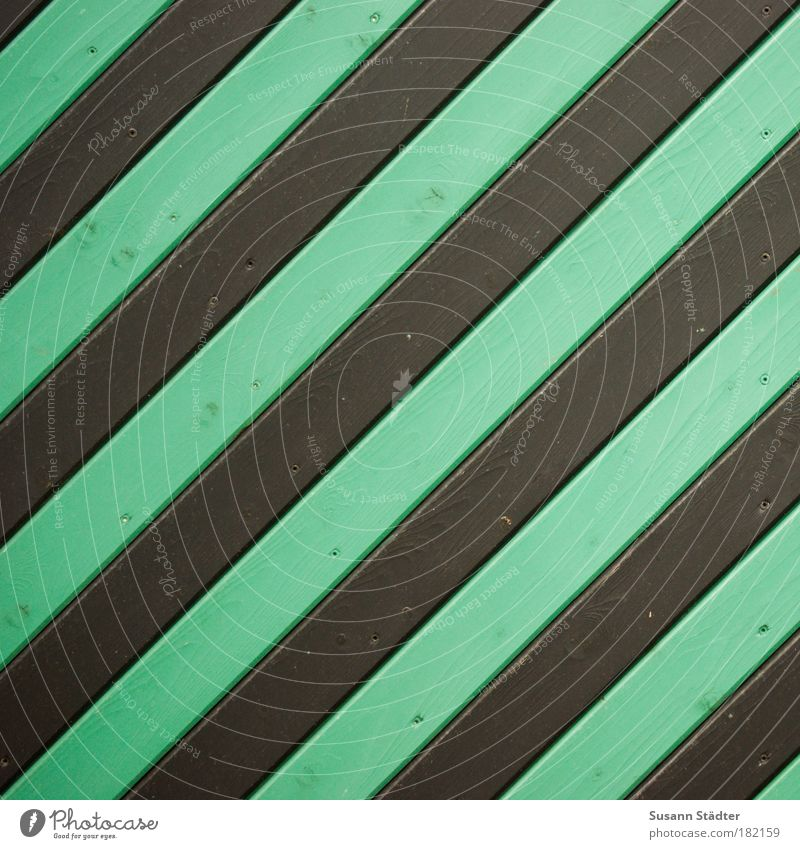 Call it a black-green insect! Interior design Manmade structures Building Architecture Wall (barrier) Wall (building) Facade Garden Door Roof Green Black Stripe