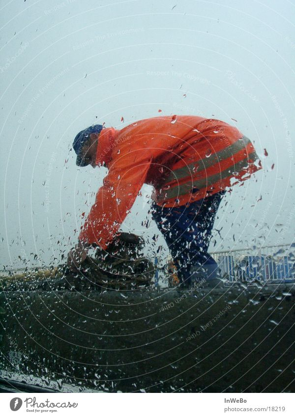 Man Rain Orange Drops of water Working man Pane Docker