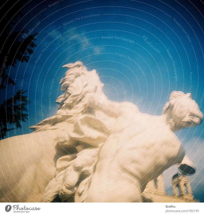 [WTCD] White fighters Exterior shot Blur Museum Sculpture Stone Fight Statue Marble Vienna Horse Pouva Lomography Sky Blue Day