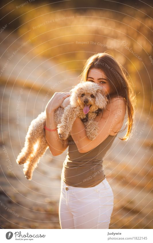 Human being Dog Youth (Young adults) Summer Young woman Sun Animal Joy 18 - 30 years Adults Environment Autumn Feminine Happy Together Friendship