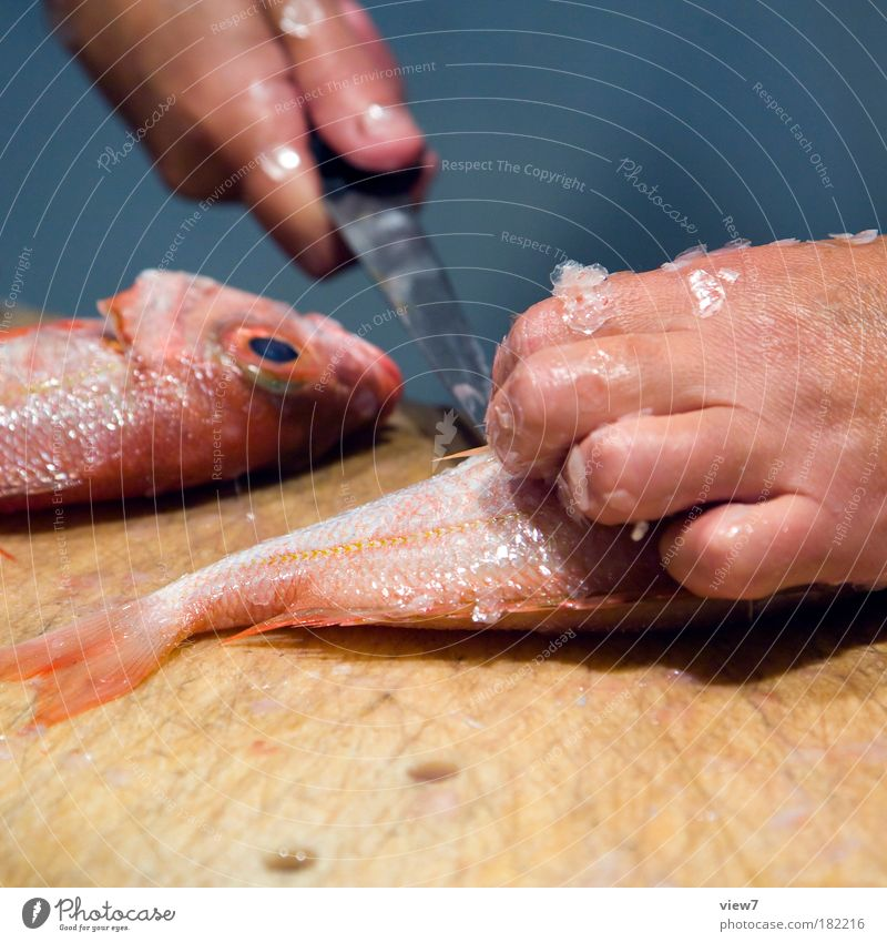 Hand Nutrition Cold Pink Fingers Fish Authentic Long Creepy Luxury Make Knives Cutlery Quality Horror