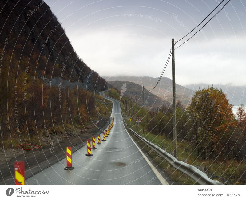 bottleneck Cable Nature Landscape Autumn Fjord Street Road sign Signage Warning sign Driving Vacation & Travel Norway Construction site Electricity pylon Narrow