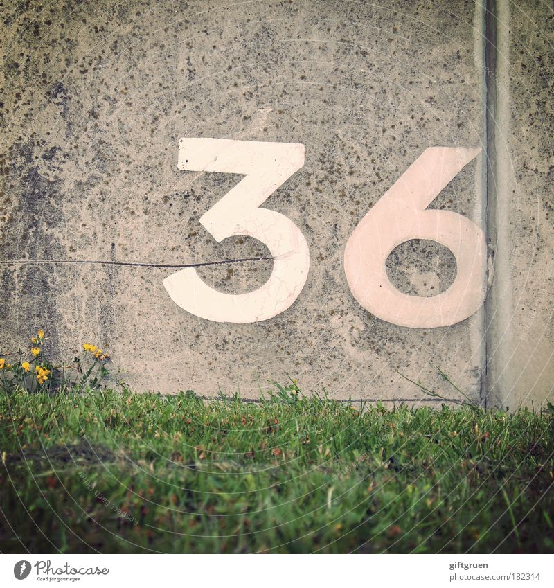 krypton Plant Grass Meadow Wall (barrier) Wall (building) Stone Concrete Sign Characters Digits and numbers Signs and labeling Arrangement Jubilee Birthday