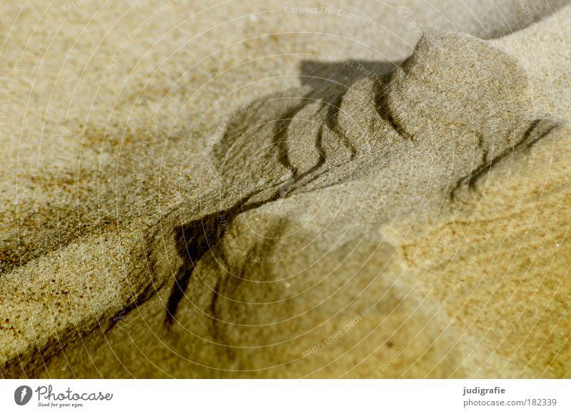 Nature Beach Mountain Warmth Sand Landscape Coast Wind Environment Rock Change Transience Natural Baltic Sea Bizarre Fine