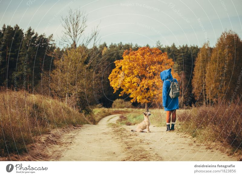 Autumn Walk - Friends for Life - Indian Summer Feeling Trip Freedom Feminine Landscape Animal Pet Dog Communicate Stand Together Happy Natural Emotions