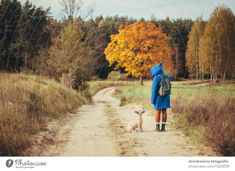 Autumn Walk - Friends for Life - Indian Summer Feeling Feminine Woman Adults Pet Dog Stand Agreed Discover Trip Freedom Landscape Autumnal Communicate Together