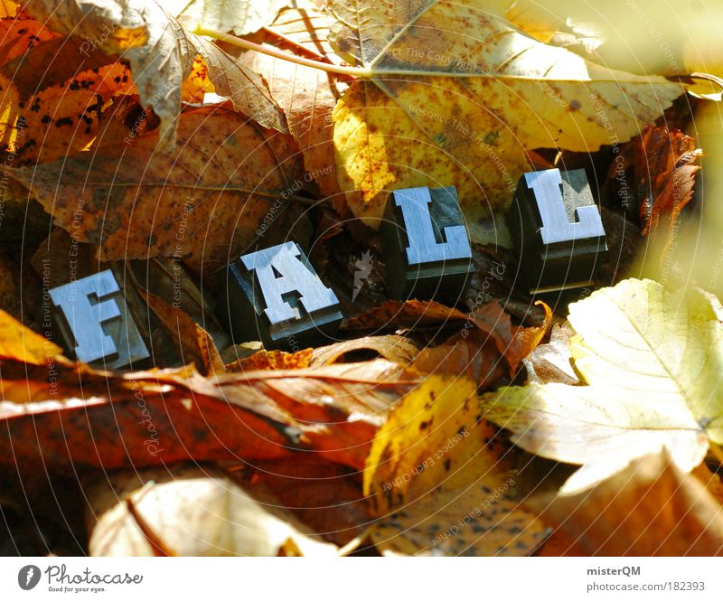 Nature Plant Leaf Environment Landscape Yellow Autumn Art Brown Earth Characters Esthetic Ground Letters (alphabet) To fall Seasons