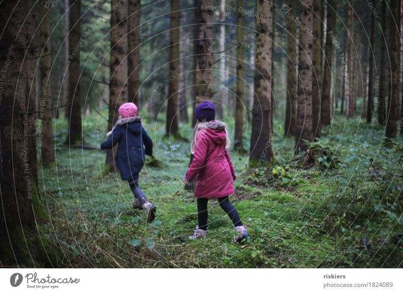 Human being Child Nature Landscape Relaxation Joy Girl Forest Environment Cold Autumn Natural Feminine Playing Together Friendship