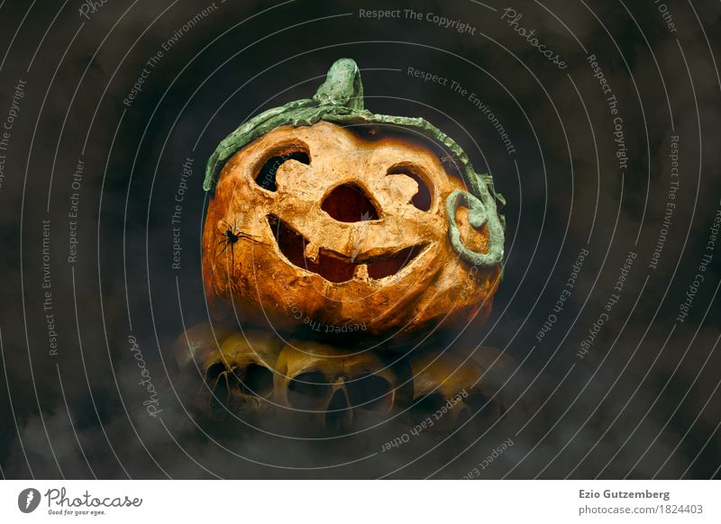 Halloween Pumpkin with Spider on Skulls Design Hallowe'en Human being Head Aggression Disgust Happiness Creepy Yellow Emotions Fear Horror Fear of death