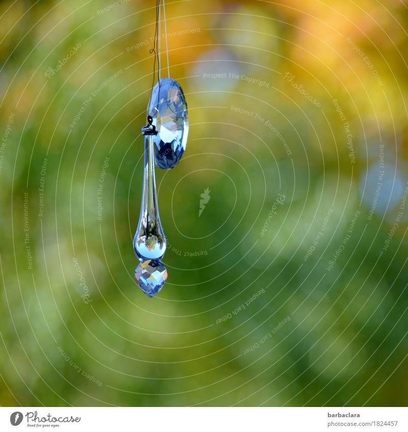 Kitsch | Miniature World Mirror Living or residing Arrange Decoration Environment Nature Garden Window Odds and ends Glass Crystal Glittering Hang Illuminate