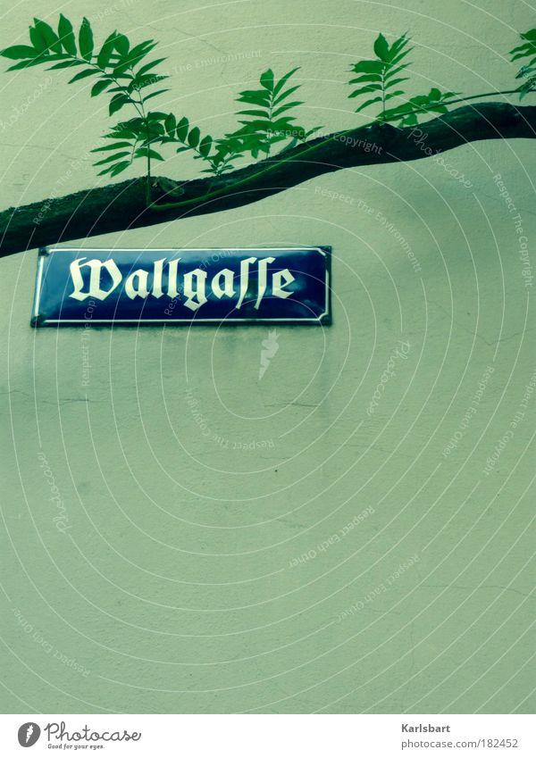 Wall (building) Branch Historic Typography Word Nostalgia Alley Vienna Enamel Street sign Lanes & trails Gothic script Enamel sign Latin script