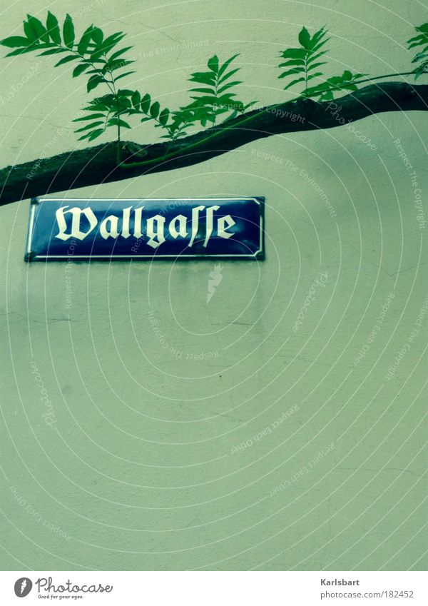 wallgasse. button. alley Vienna Street sign Enamel Enamel sign Historic Nostalgia Wall (building) Copy Space bottom Branch Gothic script Word Latin script